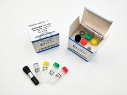Ce FDA сертификаты флуоресцентный PCR быстрый набор для тестирования