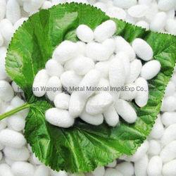 5A 20/22D естественный белый шелковых нитей чистого сырья шелковицы шелк