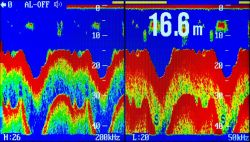 Cercatore commerciale dei pesci di a due frequenze con 7 l'affissione a cristalli liquidi di pollice TFT