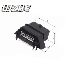643201311 Wzhe Haihe 48-pins ECU-vrouwtjesconnector