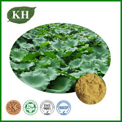 Extrait naturel de feuilles de Lotus 2% à 98% HPLC Nuciprine