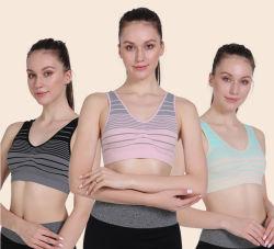 スポーツの下着の女性の非無線ブラは反弛む camisole の継ぎ目がないヨガを集めた 摩耗