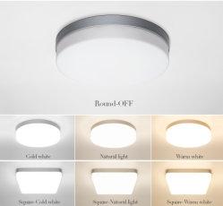 De LEIDENE Lichten van het Plafond voor van het Koude Warme Witte Natuurlijke Lichte LEIDENE van de Zaal 18W 24W 36W 48W de Lampen Plafond van Inrichtingen voor de Verlichting van de Woonkamer
