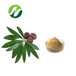 6-80% Oleuropein (HPLC) 10-30% Hydroxytyrosol 올리브 잎 추출 플랜트 추출