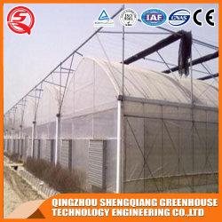 Hortalizas agricultura//jardín de flores/PE/Plástico Casa Verde para el cultivo de plantas