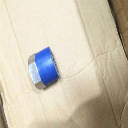 ANSI-schmiedeten quadratische HauptEdelstahl-Befestigungen Rohr-Stecker