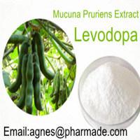Extrait de la nature de la lévodopa pur à 99 % de poudre L-DOPA Lévodopa
