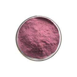 ベストセラーの製品100%の自然なブドウのシードのエキスの粉95% OPC
