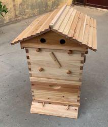 De Houten Bijenkorf van de spar met het Automatische Apparaat van de Stroom van de Honing