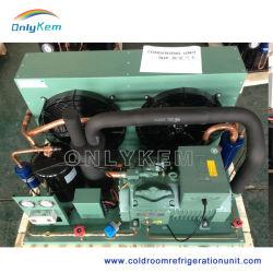La unidad de condensación de refrigeración con compresor Bitzer para un cuarto frío.