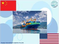 중국 에서 시카고 - - - 해상 화물까지 운송 대리업체