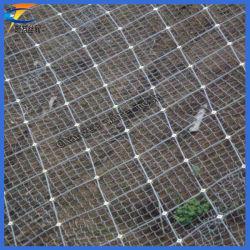 Rete di protezione del pendio dell'acciaio inossidabile (fabbricazione)