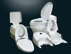 Maker van de Vorm van het Toilet van de injectie de Plastic in Vorm van de Waren van China de Sanitaire