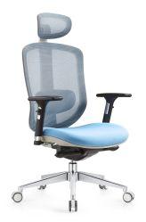 Mobilier de bureau ergonomique chaise de bureau de maillage avec glissement l'appui lombaire