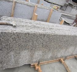 Tiger Skin White Granite Chinese White Granite