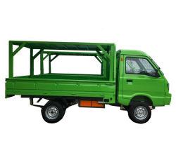 Mini Elektro-LKW / Elektro-Express-Fahrzeug / Express Elektrofahrzeuge