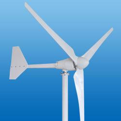 1000W permanente Horizontale As Drie van de Generator van de Magneet de Turbine van de Wind van Bladen