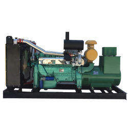250KW Groupes électrogènes diesel refroidi par eau Groupe électrogène de puissance