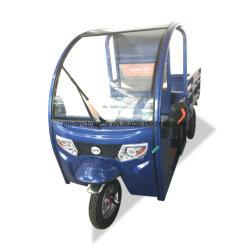 Il carico ha utilizzato un triciclo elettrico dei tre carrai per il trasporto