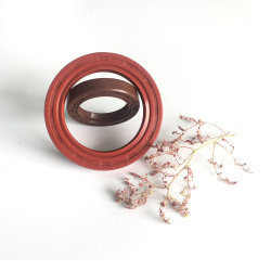 Crazy Selling Oil Seal for Auto Engine