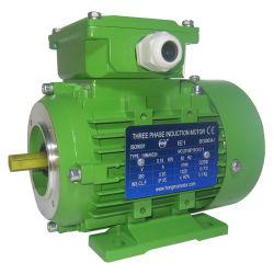 Ce moteur électrique certifié Moteur triphasé ISO 9001 2008 Cadre en fonte
