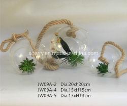 Стеклянный шарик подвешивания за сад висящих боросиликатного стекла оформление изображение большего размера