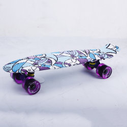 Mini 22 inch Skateboard Fish Logo plastic vier wielen PP Plastic PU Wheels LED Light Fish Skateboard