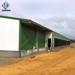 Große Schuppen-vorfabrizierte Huhn-landwirtschaftliches Gebäude-Stahlhalle