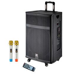 Berufsaudio 15 Zoll-Karaoke Bluetooth beweglicher Lautsprecher mit Mic