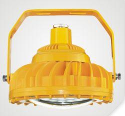 L'éclairage antidéflagrant raccord électrique antidéflagrant Projecteur à LED pour le pétrole et gaz Station 30 W/50W