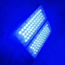 Imperméable IP65 200W rose/rouge/vert/bleu Projecteur à LED de couleur pour le parc de loisirs de plein air paysage marin de l'éclairage de décoration