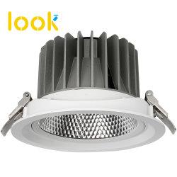 Китайский завод алюминиевых Светодиодный прожектор 30W коммерческих потолочный лампа отель початков лампы
