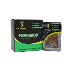Haute teneur en protéines Mealworm Frais pour les poissons et d'alimentation Arowana Food