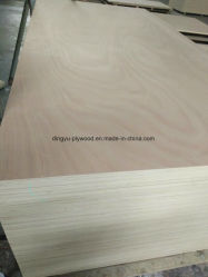 高品質Okoume/Bintangor/Pine/Birch/Pencilのヒマラヤスギはよい価格の家具の合板に直面した