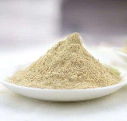 Производство сушеных желтый/белый лук порошок
