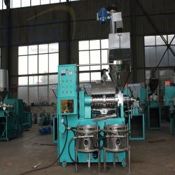 Sinoder 공급 기계를 만드는 자동적인 종려 커널 나사 유압기 해바라기 기름