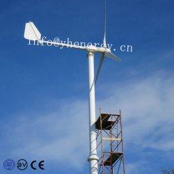 3000W de Generator van de wind met de Toren van de Turbine van de Wind van het Controlemechanisme van de Last