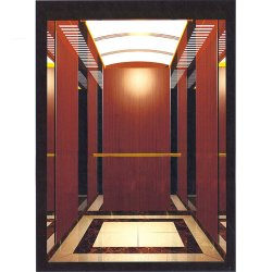 Lift van de Lift van de Passagier van 6 Persoon van het Huis van de Spiegel van het roestvrij staal de Panoramische