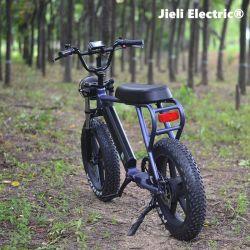 20*4,0 pneu Fat 48V 750W Lithium pédale puissance assistée et de l'accélérateur Ebikes d'entraînement