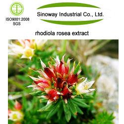Salidroside 3 à 5 %, Rosavin Rosavins 3 à 5 %, 2 % jusqu'Extrait de Rhodiola rosea