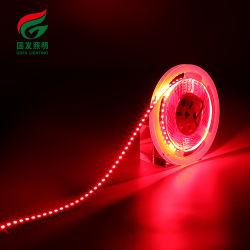 Led de 120 por metro SMD LED flexibles impermeables2835 Tiras de LED de tira de cinta de LED de 5m 12V DE LA LUZ DE 2835 Alquiler de luces de LED tiras