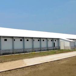 Structure en acier galvanisé de la construction de la chambre de poulet