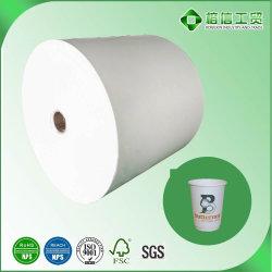 Alta Qualidade preço baixo do rolo de papel revestido de PE para venda