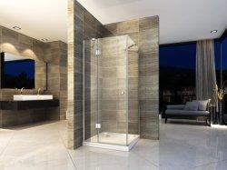 Dobradiça sem caixilho Custom-Made Estilo Aberto sala de chuveiro em vidro