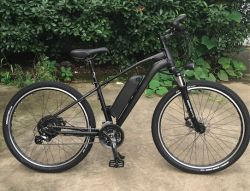 48V 350W TRAVÃO DE DISCO E-bike