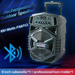 bateria recarregável profissional interior Amplificador ativo de alto-falante