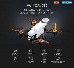 Ronzi in tempo reale dell'aeroplano di Quadcopter RC del blocco per grafici della fibra del carbonio di fotographia della trasmissione di immagine del mini RC del giocattolo HD di Qav210 della macchina fotografica ronzio di Fpv