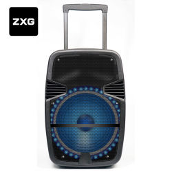 Batería incorporada al aire libre de 15 pulgadas de PA Altavoz inalámbrico Bluetooth carrito