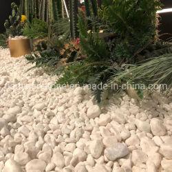 Snow White Pebble Stone, de galets de pierre, de pierre, marbre cailloux de rivière