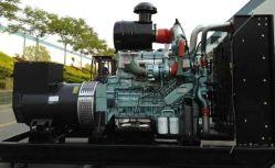 Gruppo elettrogeno a gas naturale/biogas serie Wt615 / T12 Produttore